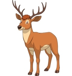 Adult funny deer vector