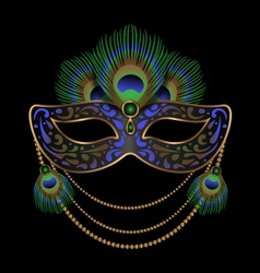 Carnival mask decorated with peacock feathers vector