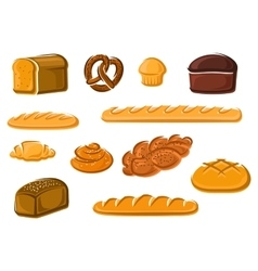 Healthy natural bakery and pastry products vector