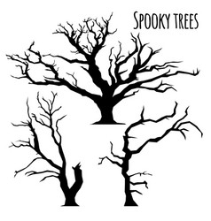 collection of trees silhouettes on the white vector image vector image
