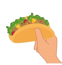 Taco mexican food menu icon vector