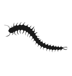 Centipede insect icon vector