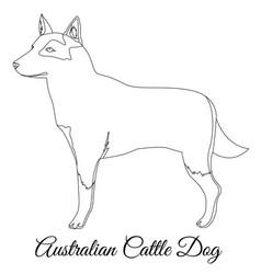 Australian cttle dog outline vector