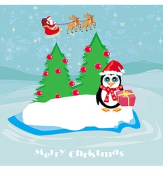 Penguin with christmas gift vector