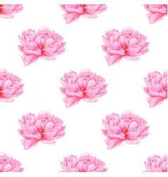 watercolor pink peony seamless pattern botanical vector image vector image
