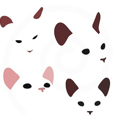 Cat faces isolated on white background vector