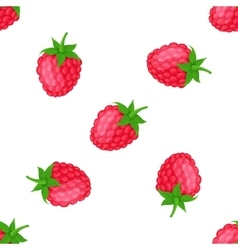 Seamless pattern with raspberries vector