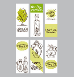 a set of cards and banners with olives for vector image vector image