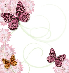butterflies and daisy invitation vector image vector image