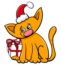Cartoon cat with christmas present vector