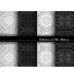 Collection of Black and White Seamless Pattern vector image