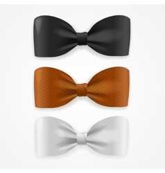 Colorful bow tie set vector