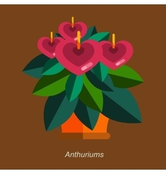 Flat of indoor homeplant vector