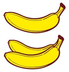 banana vector image vector image
