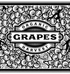 Retro Grapes Harvest Label Black And White vector image