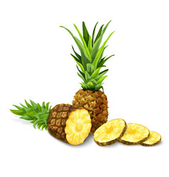 Pineapple isolated poster or emblem vector