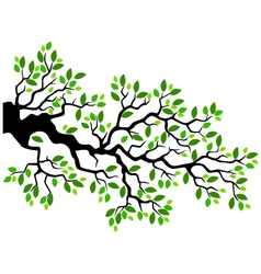 Green leaf tree branch vector