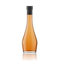 Glass brandy bourbon whiskey cognac bottle vector