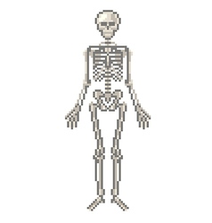 Pixel human skeleton isolated vector