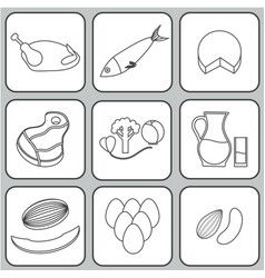 salmonella contaminated food vector image vector image