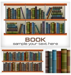 Books on shelves  text vector