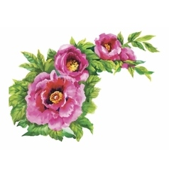 Watercolor flowers in classical style on a white vector