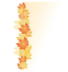 Fall leafs vector