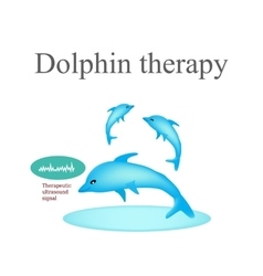 Dolphin therapy on isolated vector