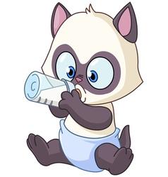 Baby kitten vector