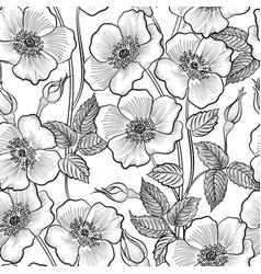 floral engraved seamless pattern flower garden vector image vector image