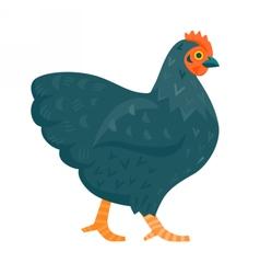 Black chicken funny vector image