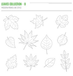 Set of leaves in modern line style vector