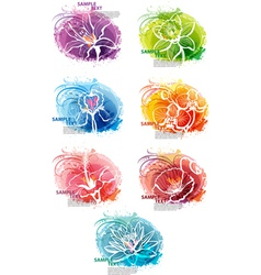 flower heads vector image