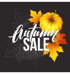 Design banner autumn sale fall poster design with vector