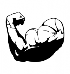 biceps vector image