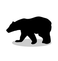 bear wild black silhouette animal vector image