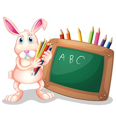 Blackboard bunny vector