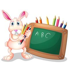 Blackboard Bunny vector image vector image