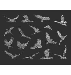 Collection of birds eps 8 vector