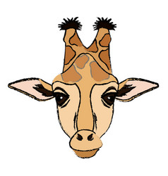 Giraffe african animal wildlife image vector
