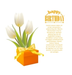 Gift and white tulips vector image
