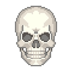 Pixel human skull isolated vector