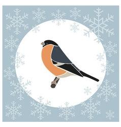Christmas card bullfinch blue vector image