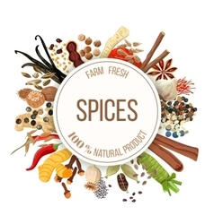 Culinary spices big set vector