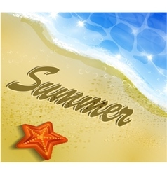 Beautiful beach top view vector image vector image
