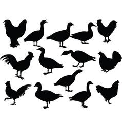 farm birds - vector image vector image