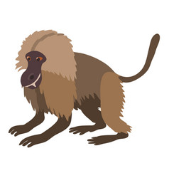 gelada monkey icon cartoon style vector image vector image
