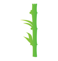Isolated bamboo stick vector