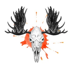Moose skull and splatter vector