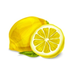 Lemon isolated poster or emblem vector image